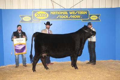 Grand Champion Percentage Cow/Calf Pair